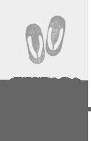 新婦和装1点/新郎和装1点(白無垢、色打掛、黒引/紋付、袴などから自由に選択OK)